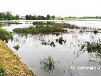 Chcą wybudować cztery poldery na terenie gminy